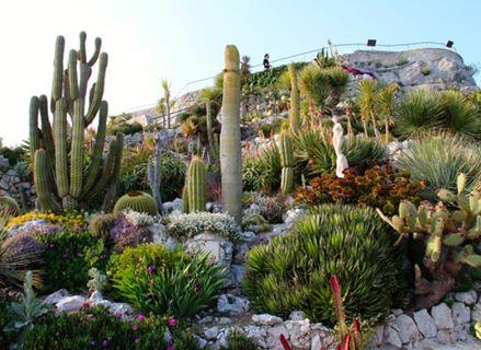 Travel Guide For Le Jardin Exotique D Eze Eze Tour Packages