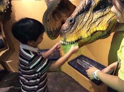 Book a Tour and Visit Children's Discovery Museum