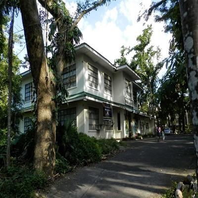 Places To Visit Near Uplb Museum Of Natural History Book Hotel Tourist